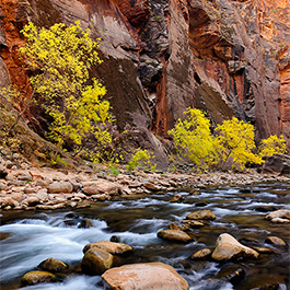 The Narrows, Zion, UT